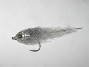 23 - Fly 40 silverside