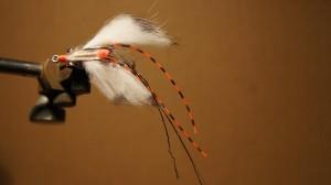 31 - Fly DSC01099