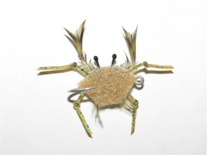 4 - Fly 02 ghost crab