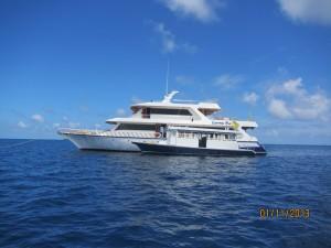 Maldives Couples 14 IMG 0609
