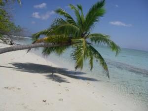 Maldives Couples 27 IMGP1269