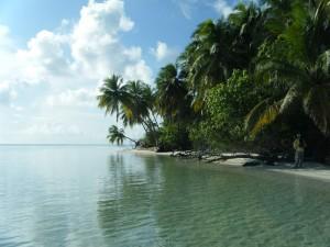 Maldives South 40  251